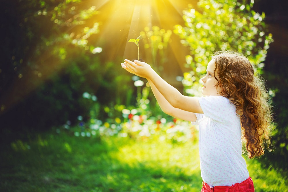 50463320 - little girl holding young green plant in sunlight. ecology concept. background toning to instagram filter.